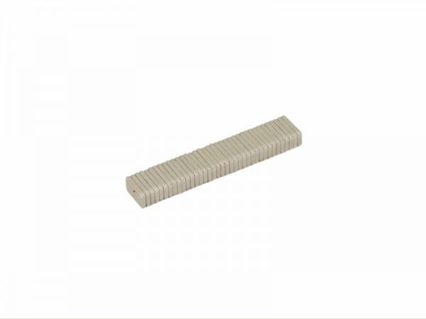 Magnetverschlussplatten 10 x 5 x 1,5 mm